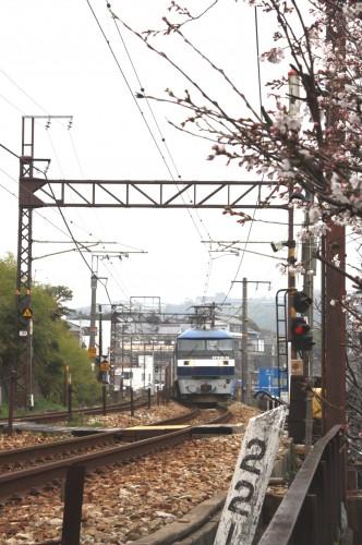 EF210-14牽く下り貨物列車