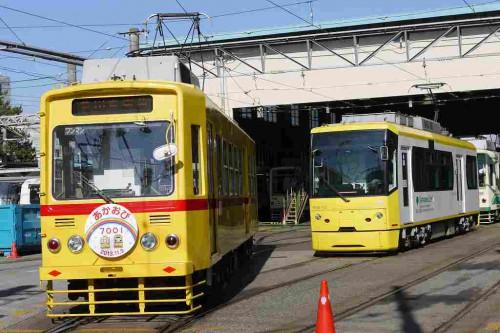 黄色の並び25-11-26