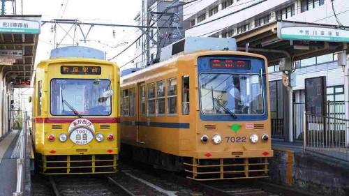 黄色の並び2 25-11-26