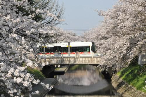 pict-富山DSC_6590