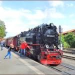 2014年 ドイツ、メルヘン鉄道の旅 Part15 ハルツ狭軌鉄道 その1