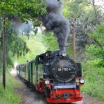 2014年 ドイツ、メルヘン鉄道の旅 Part24 リューゲン軽便鉄道 その2