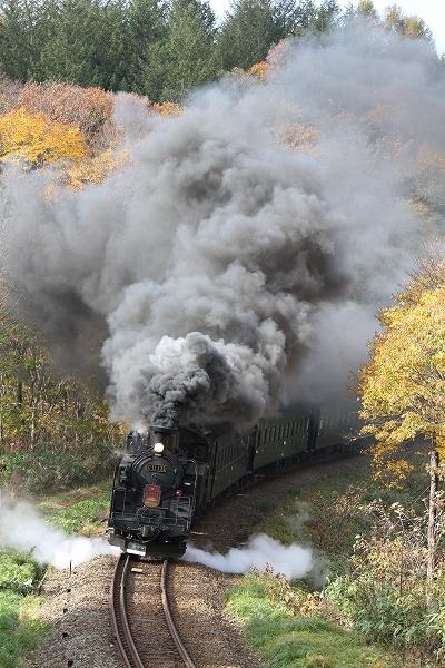 今年限りのSL函館・大沼号、SLニセコ号/2014.10.26/Posted by 893-2