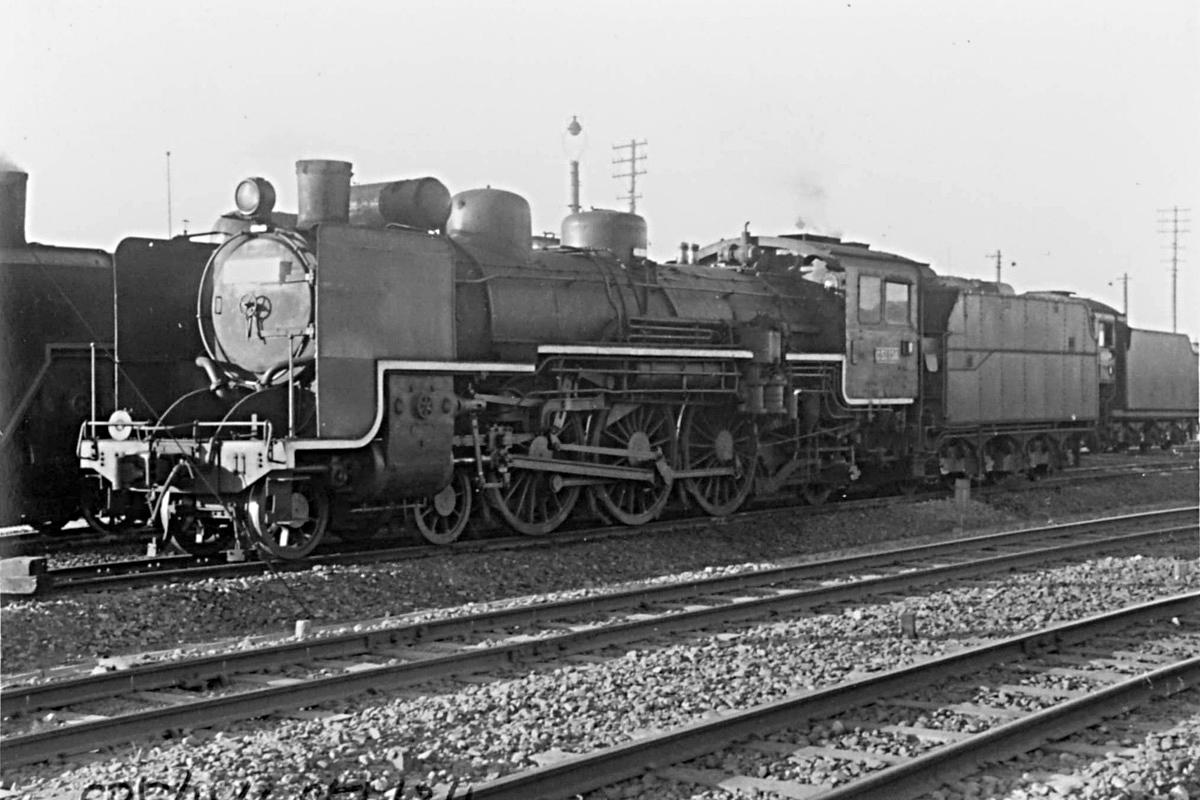 C51134