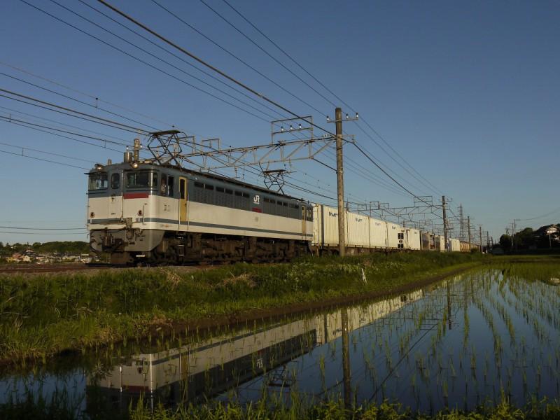 P1506-1