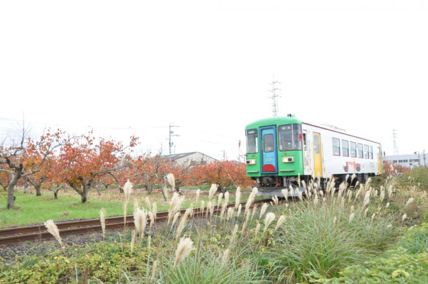 樽見鉄道DSC_6725