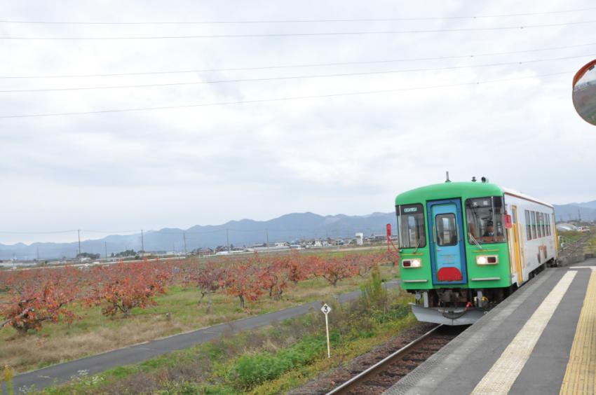 樽見鉄道DSC_6786
