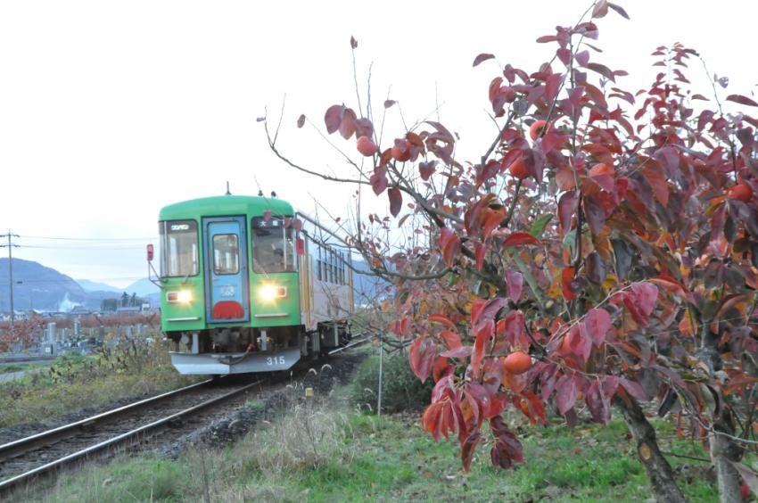 樽見鉄道DSC_6605