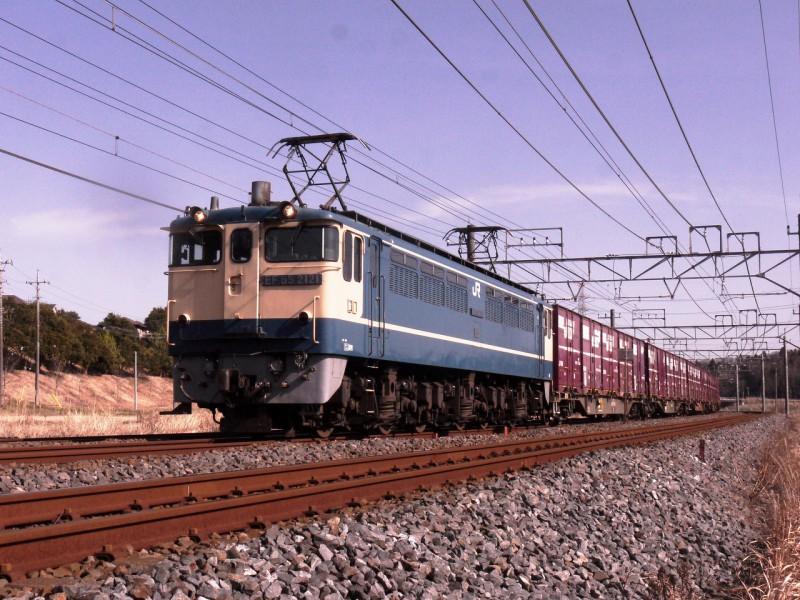 P1960063TM