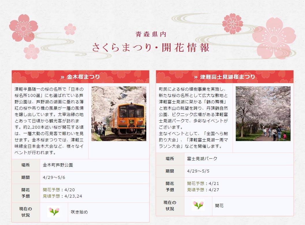 青森県桜開花状況_100