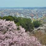 三江線 桜満開、春爛漫の旅 Part2 三次到着、潮温泉へ